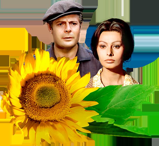 ソフィア・ローレンとマルチェロ・マストロヤンニ